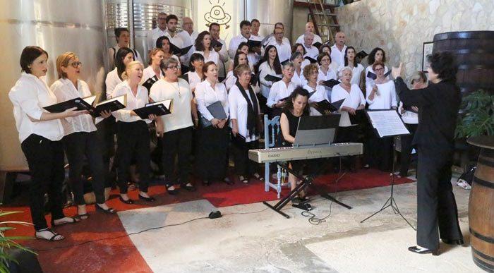 Concert a la 10a Mostra de cinema de muntanya de Palma