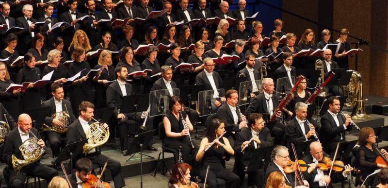 La creació de Haydn